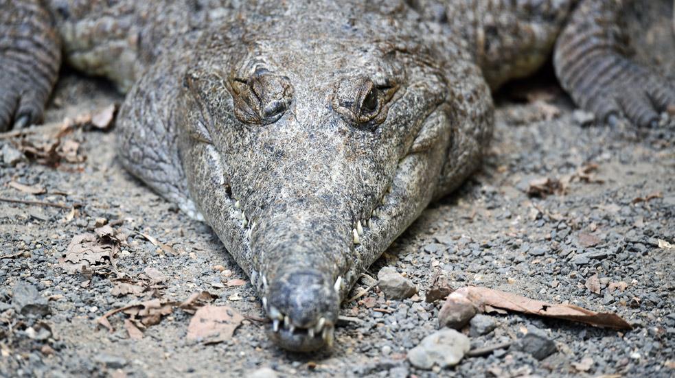 Národní park Kakadu