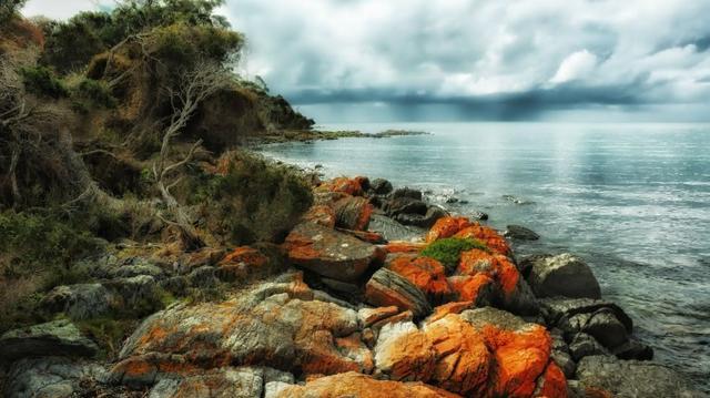 Příroda Austrálie