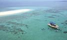 Velký bariérový útes - zájezd potápění s velrybami