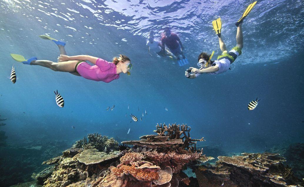 Zájezd Podmořský svět Barierového útesu