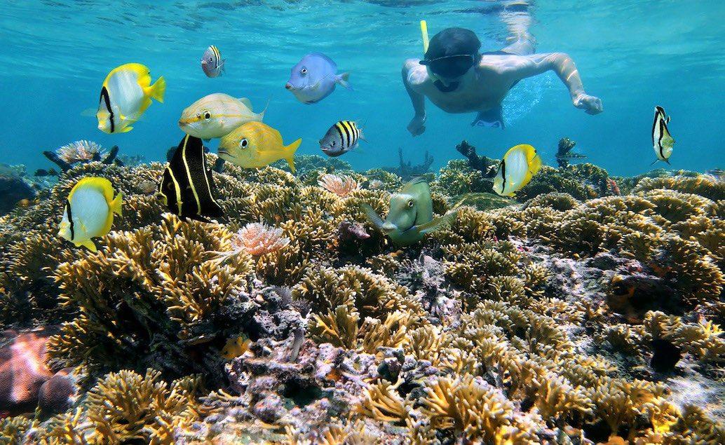 Fidži - pláže Pacifických ostrovů