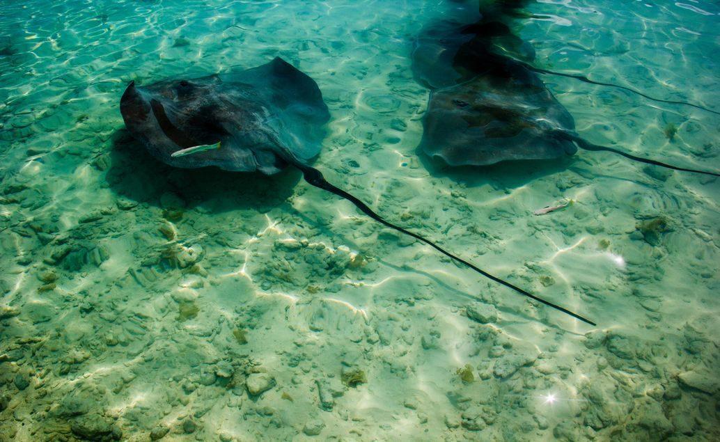 Ráj na zemi - Le Meridien, ostrov Bora Bora