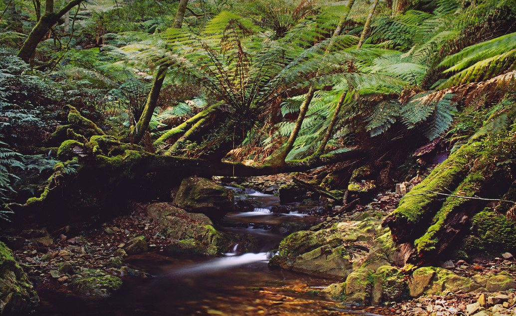 Zájezd Cairns s výlety do okolí